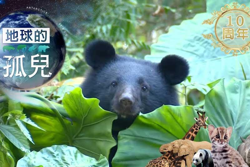 地球的孤兒 Mandarin Language nature show for kids