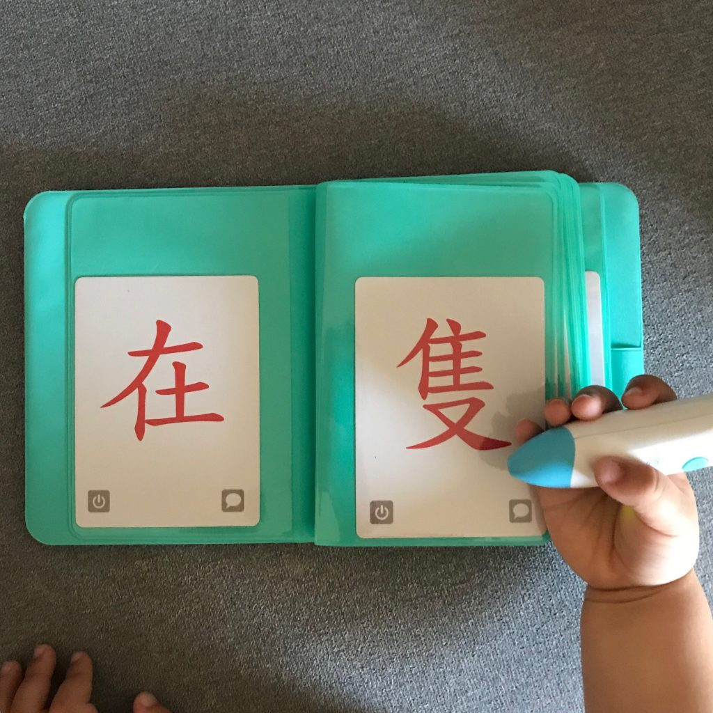 c-pen chinese flashcards in protective biner