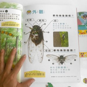 a page from Ciaohu magazine for age 4-5