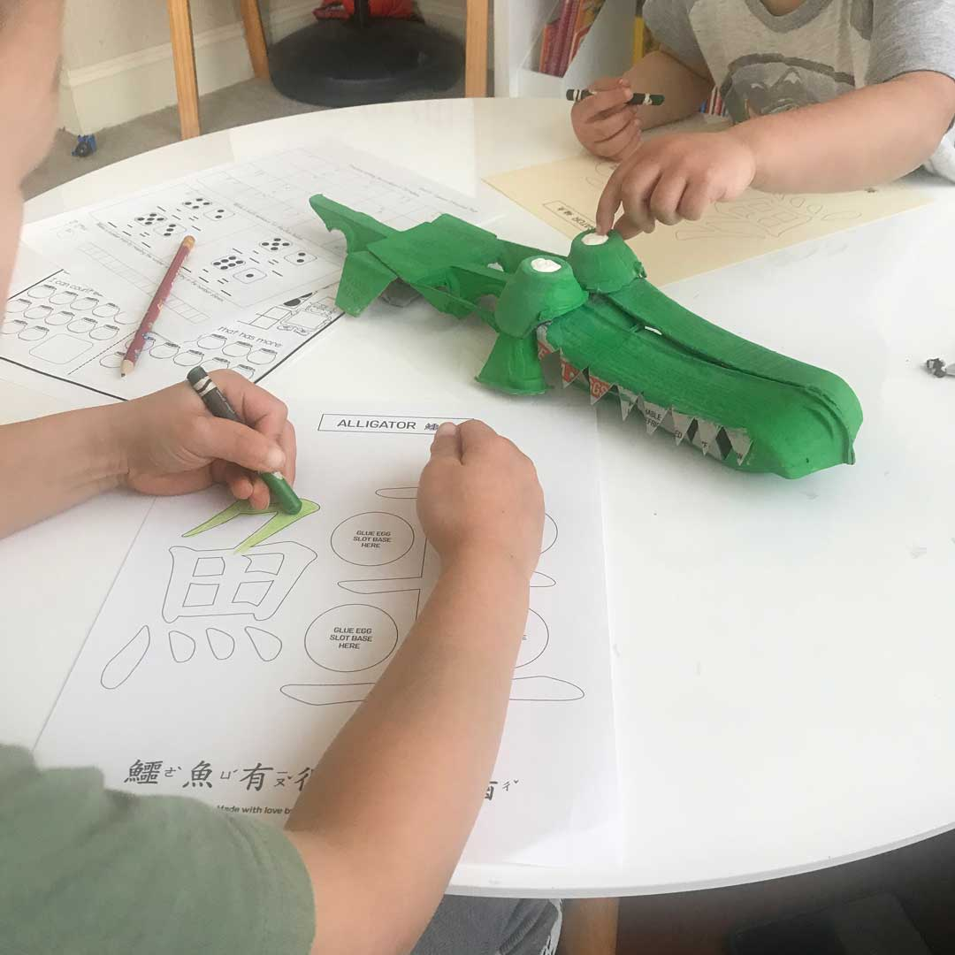 Coloring alligator activity sheet