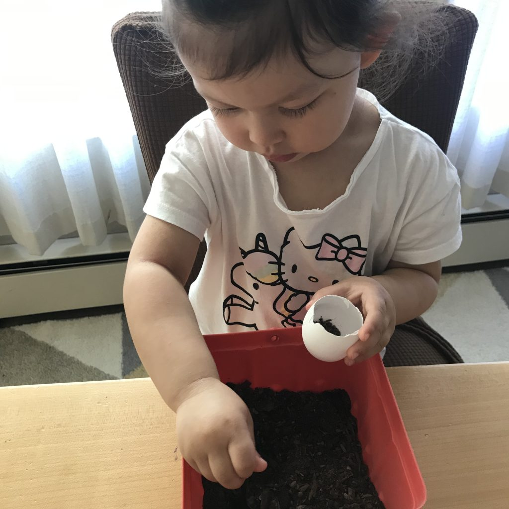 Filling eggshells with dirt