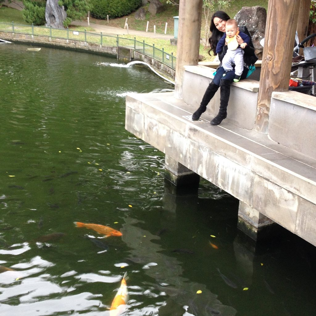 Zhishan Garden Koi Pond
