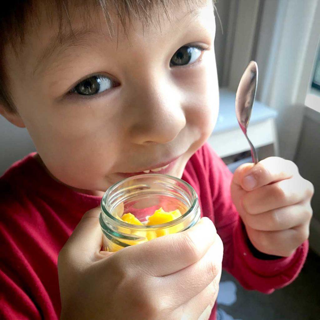 mango coconut tapioca chia pudding