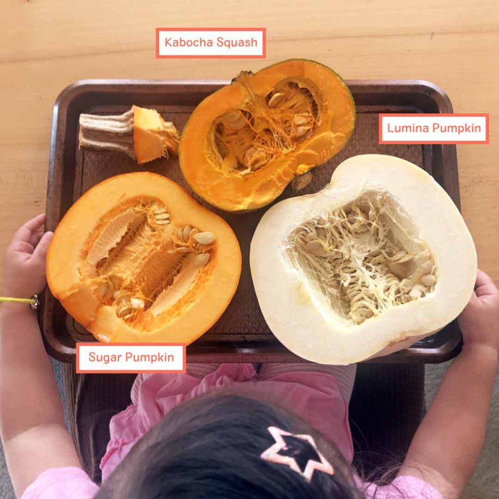 Best pumpkin for pie - cut pumpkins