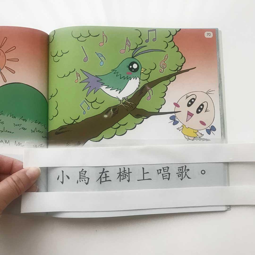 reading strip for sagebooks